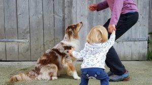 Kind, Hund, Mutter springen