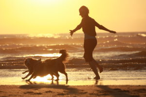 Frau läuft im Sonnenuntergang am Meer mit zwei Hunden