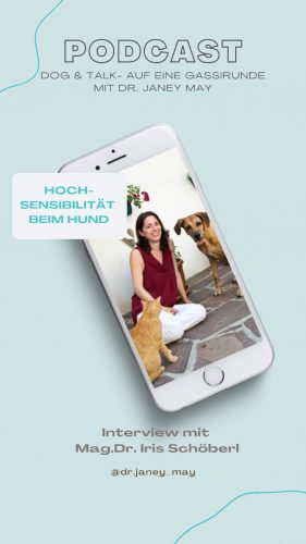 Podcast Iris Schöberl
