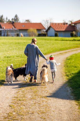 Spaziergang mit Kind und drei Hunden